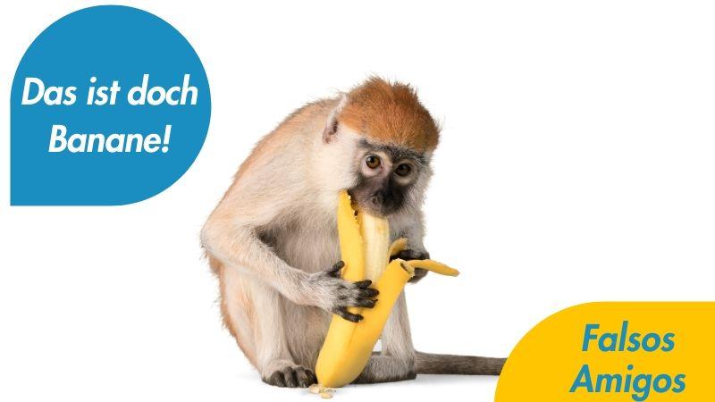 Das ist doch Banane - Podcast aleman falsos amigos